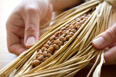 納豆はどれだけ混ぜて食べるといいの?
