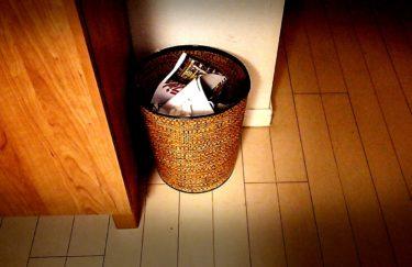 ゴミ箱からコバエが発生する原因−どこからきた?対策は?