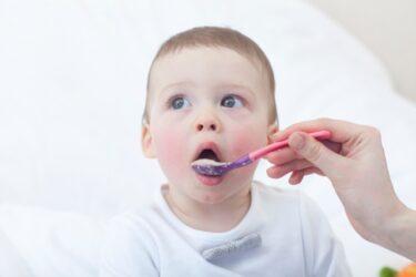 海外の赤ちゃんは離乳食で何を食べているの?