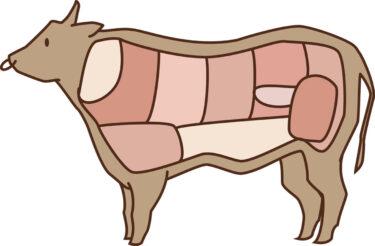 国産牛肉が豚や鶏肉より高価な理由と肥育ホルモンのヒトへの影響